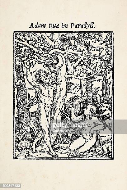 eve offering apple to adam in garden eden after holbein - adam biblical figure stock illustrations, clip art, cartoons, & icons