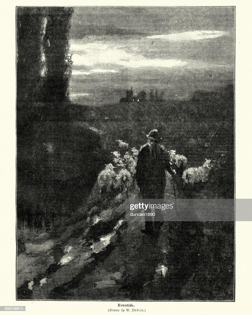 Eventide, viktorianischen Schäfer und seiner Schafherde : Stock-Illustration