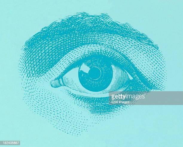 ilustrações, clipart, desenhos animados e ícones de os olhos - olho