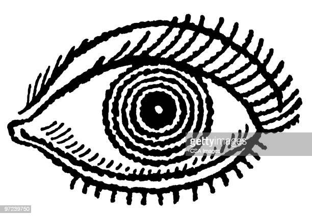 eye - staring stock illustrations