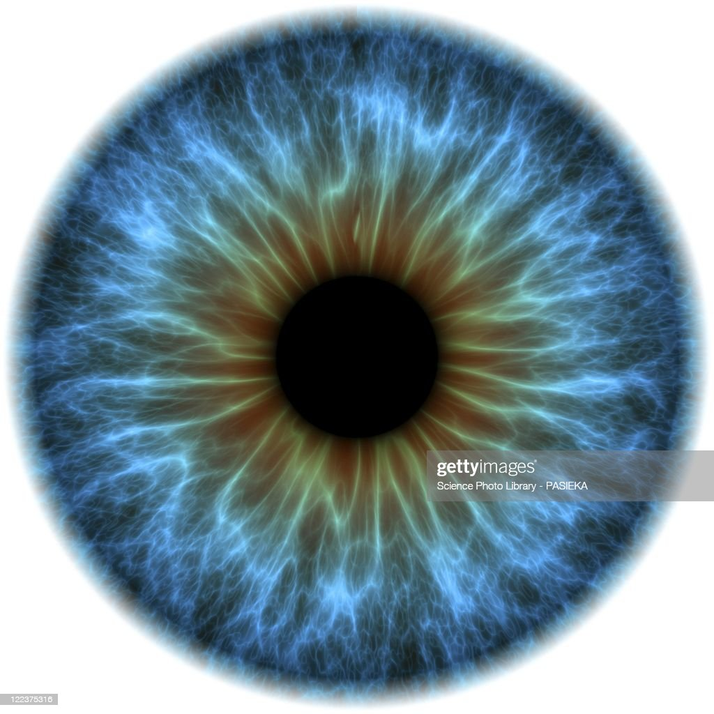 Eye, iris : stock illustration