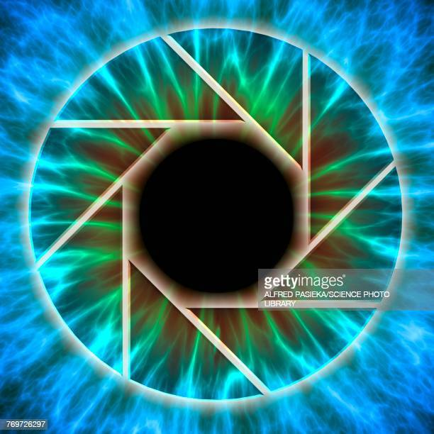 Eye, iris with camera diaphragm, illustration