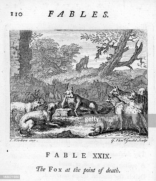 Fable Fox at the point of Death