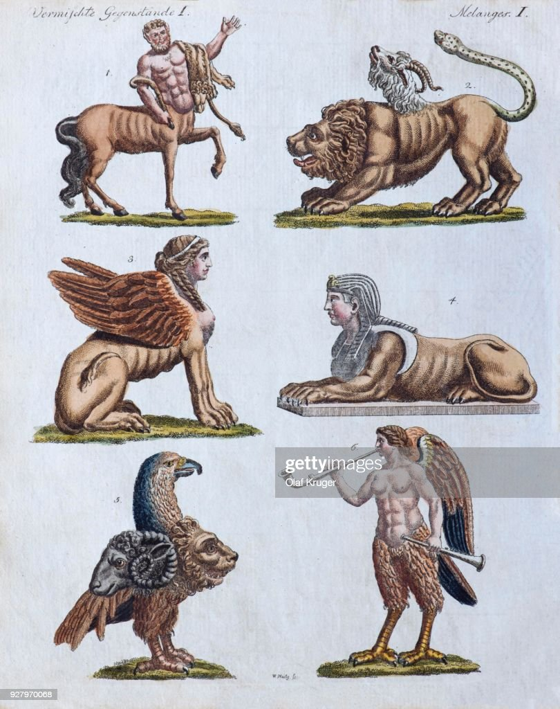 Fabulous animals, hand-colored copper engraving from Friedrich Justin Bertuch Picture book for children, Weimar 1792 : stock illustration