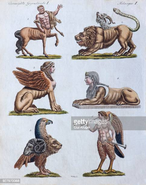 fabulous animals, hand-colored copper engraving from friedrich justin bertuch picture book for children, weimar 1792 - greek mythology stock illustrations