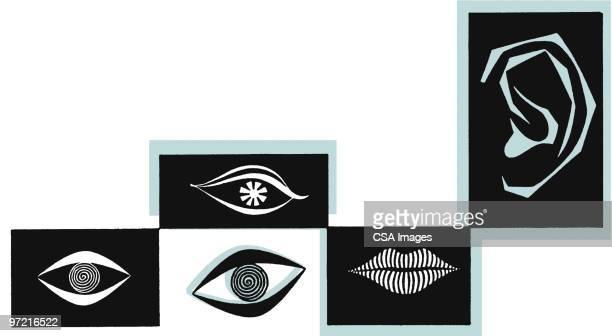 ilustrações, clipart, desenhos animados e ícones de face parts - boca humana