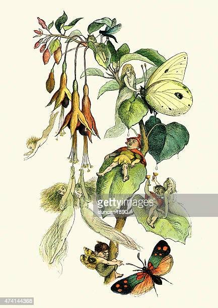 fairies playing with butterflies - fairy stock illustrations