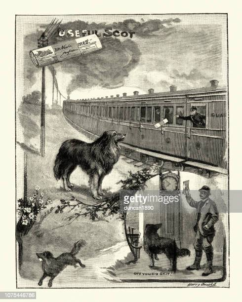 Faithfully dog collecting his masters newspaper, 19th Century