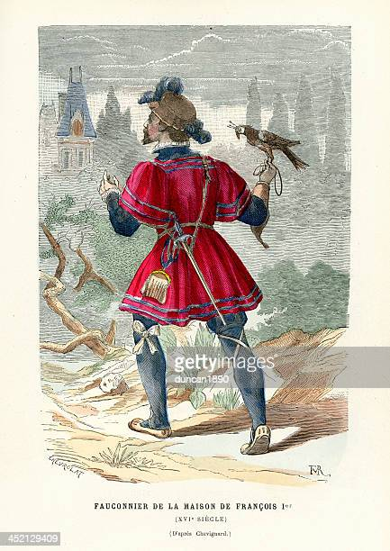 falconer, 16th century - falconry stock illustrations