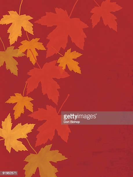 Fall leaves illustration on red background
