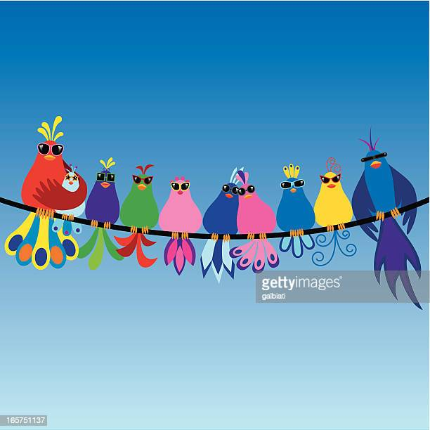 family of birds wearing sunglasses - telephone line stock illustrations, clip art, cartoons, & icons