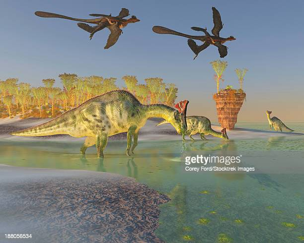 A family of Olorotitan eat duckweed in a large swamp as two Archaeopteryx birds fly overhead.