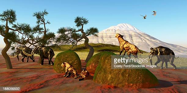 A family of Saber Toothed Tigers watch a herd of Woolly Mammoths pass by their den.