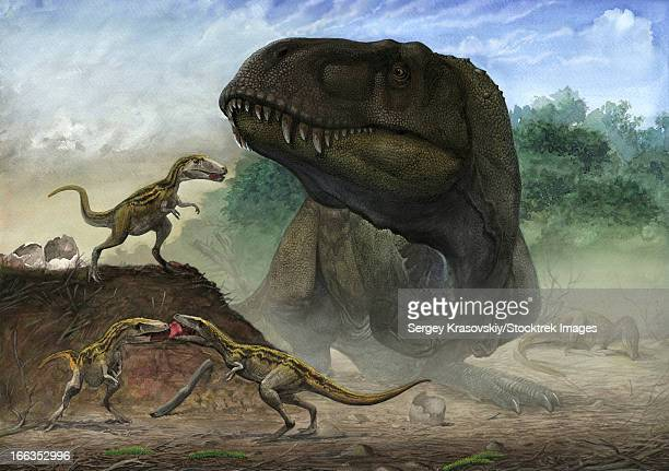 A family of Zhuchengtyrannus magnus, the mother with their offspring.