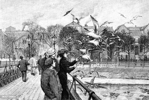 Family on the quay feeding seagulls