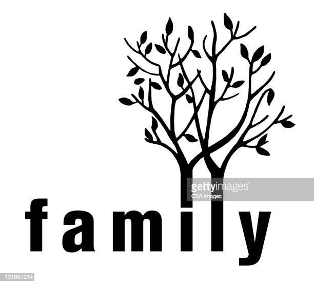 family tree - branch stock illustrations