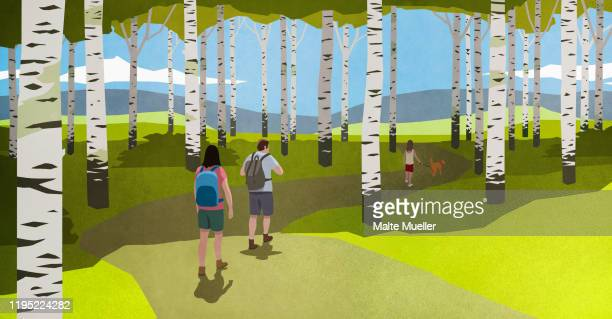 family with dog hiking among birch trees in idyllic woods - family stock illustrations
