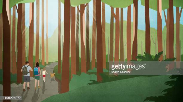 family with dog hiking in sunny, idyllic woods - leisure activity stock illustrations