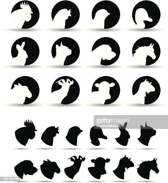 ilustraciones, imágenes clip art, dibujos animados e iconos de stock de iconos de animales de granja - vacas