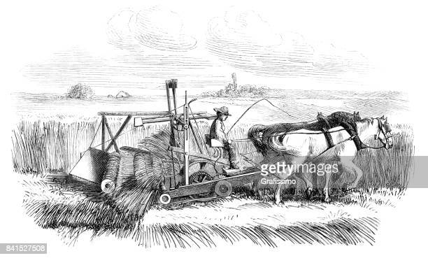 farmer making hay on field with cyrus mccormick reaper 1859 - horsedrawn stock illustrations, clip art, cartoons, & icons