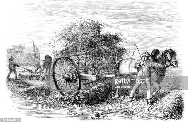 farmer saving hay on field with haymaking machine 1859 - 18th century stock illustrations