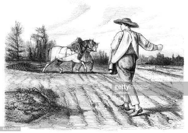 farmer sowing seeds on field with hands 1859 - 18th century stock illustrations