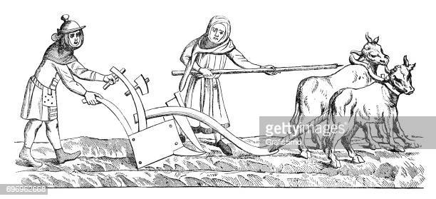 farmer with wife plowing a field with two cows 14th century - circa 14th century stock illustrations, clip art, cartoons, & icons