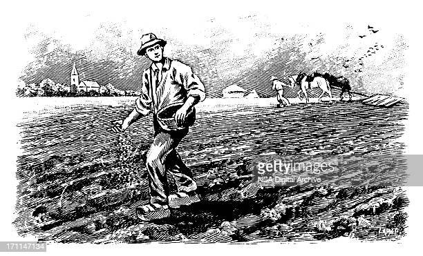 Farmers | Antique Design Illustrations