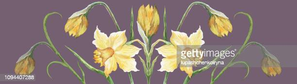 fashionable illustration modern artwork in the style of impressionism my original painting gouache watercolor horizontal spring landscape bush blooming light yellow daffodils - narcissus mythological character stock illustrations, clip art, cartoons, & icons