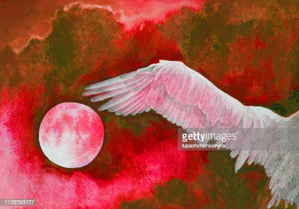 fashionable illustration modern artwork my original watercolor painting impressionism horizontal symbolic sky landscape setting sun in the clouds and a wing of a flying white bird in intense red hues - bird of prey stock illustrations, clip art, cartoons, & icons