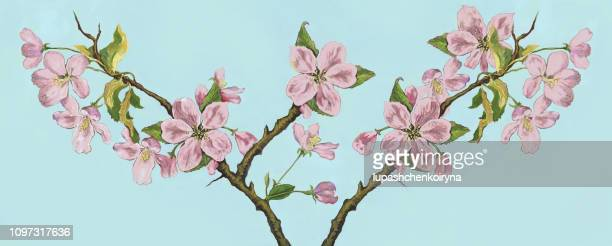 Fashionable illustration modern work of art in the style of impressionism my original drawing with gouache and watercolor spring still life a branch of a blossoming apple tree in the glare of sunlight