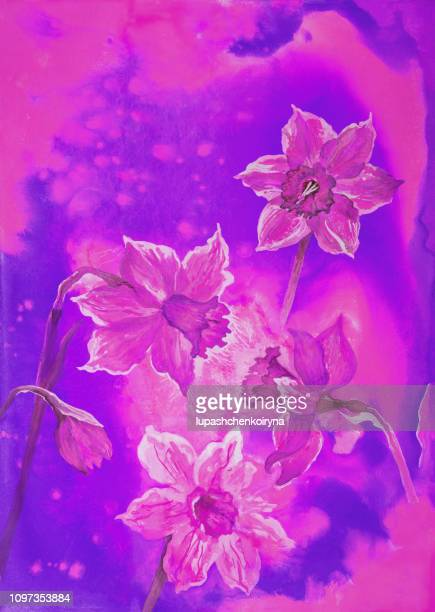 Fashionable illustration modern work of art my original painting with watercolors in violet colors flowers spring still life blossoming narcissus
