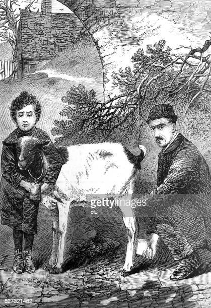 father and son milking the goat - milking stock illustrations, clip art, cartoons, & icons