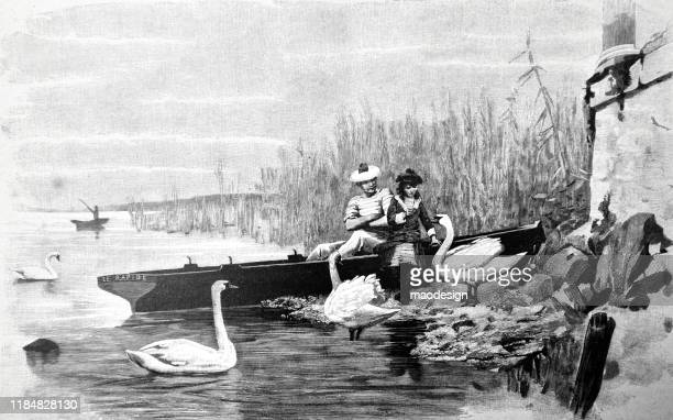 feeding swans by the river - 1887 stock illustrations, clip art, cartoons, & icons