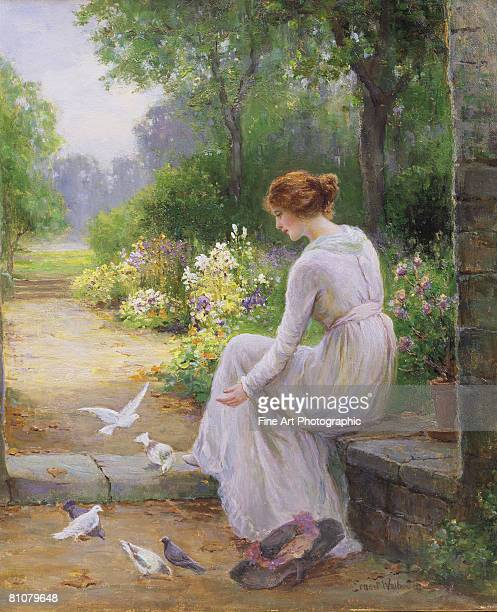 feeding the doves - one young woman only stock illustrations