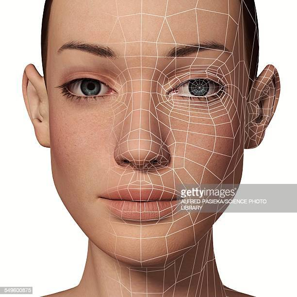 Female Head with biometric facial map