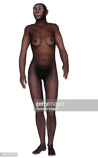 Female homo erectus walking, white background.