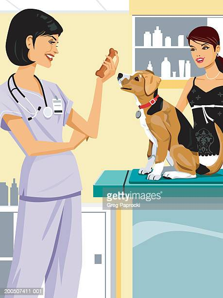 Female veterinarian giving biscuit to dog on examination table