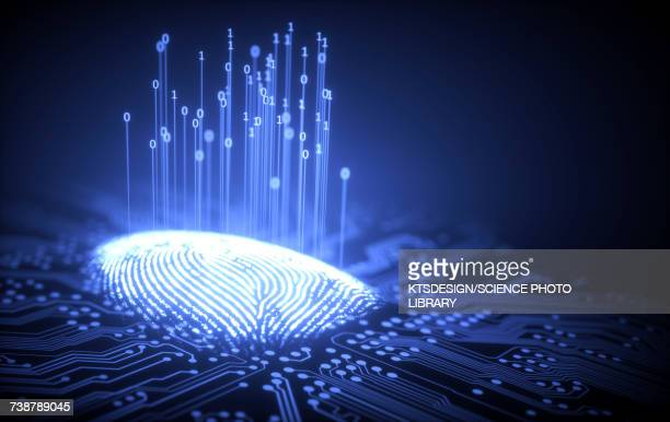 Fingerprint and circuit board, illustration