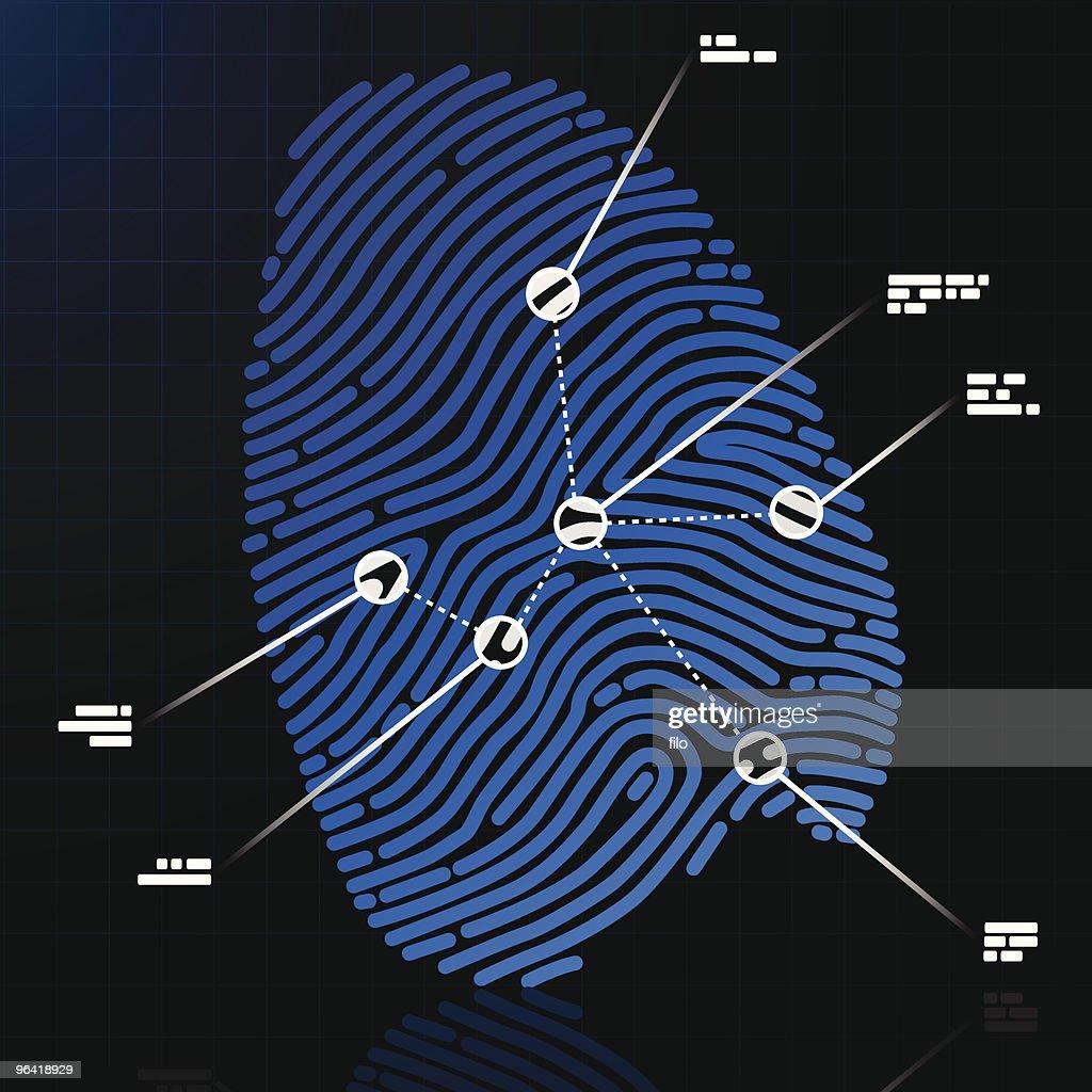 Fingerprint : stock illustration