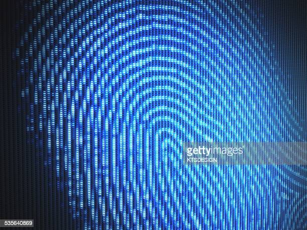 fingerprint, illustration - safety stock illustrations