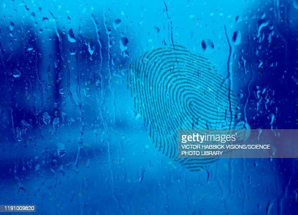 fingerprint on wet glass, illustration - natural pattern stock illustrations