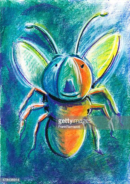 Firefly For Children Pastel Chalk Drawing