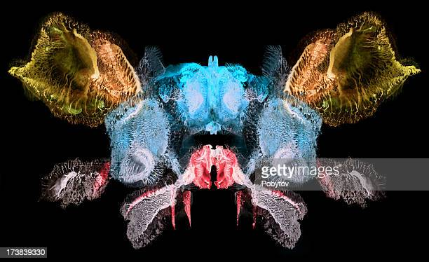 firefly - macrophotography stock illustrations