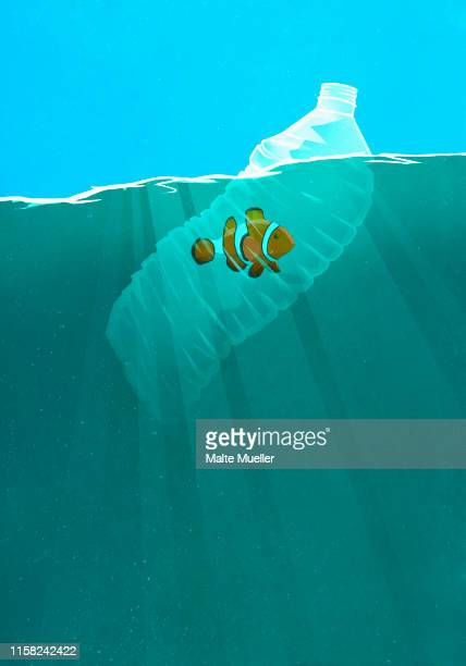 fish trapped in plastic water bottle in ocean - plastic stock illustrations