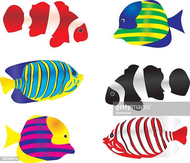 fish1 - anemonefish stock illustrations, clip art, cartoons, & icons