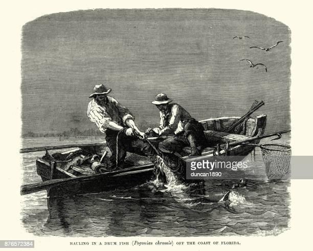 ilustrações, clipart, desenhos animados e ícones de pescadores transportando em peixes drum, florida, século xix - estados da costa do golfo