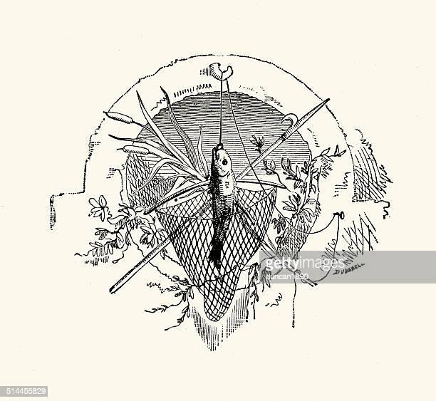 ilustraciones, imágenes clip art, dibujos animados e iconos de stock de diseño de pesca - red de pesca