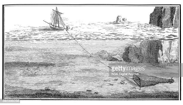 Fishing with trawl net (antique engraving)