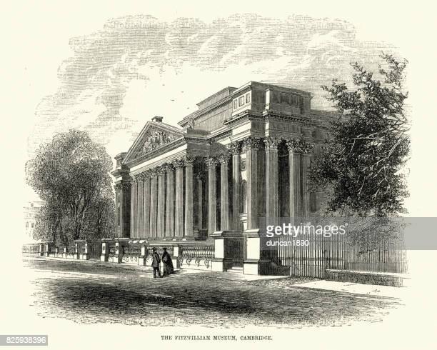 fitzwilliam museum, cambridge, 19th century - pediment stock illustrations, clip art, cartoons, & icons